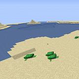 Как сделать пляж в Minecraft